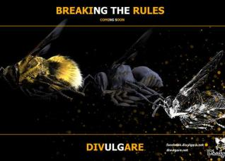 Divulgare breaking the rules