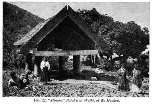 Maoríes fronte o seu