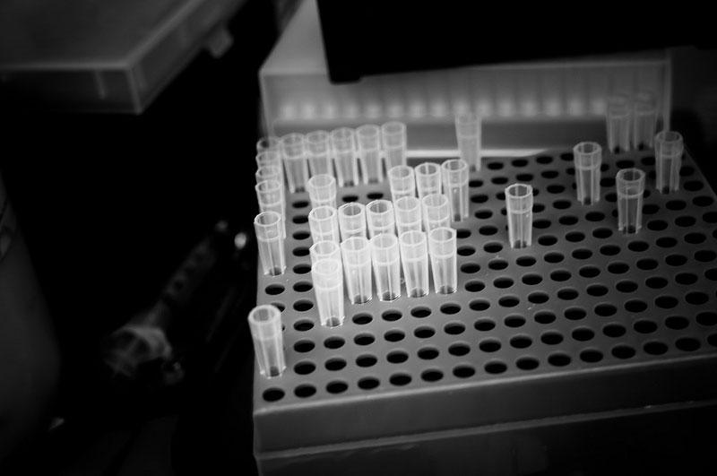 Laboratorio de biomedicina