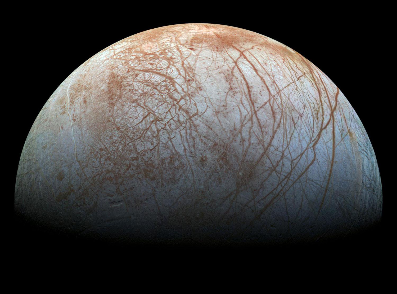 Lúa Europa