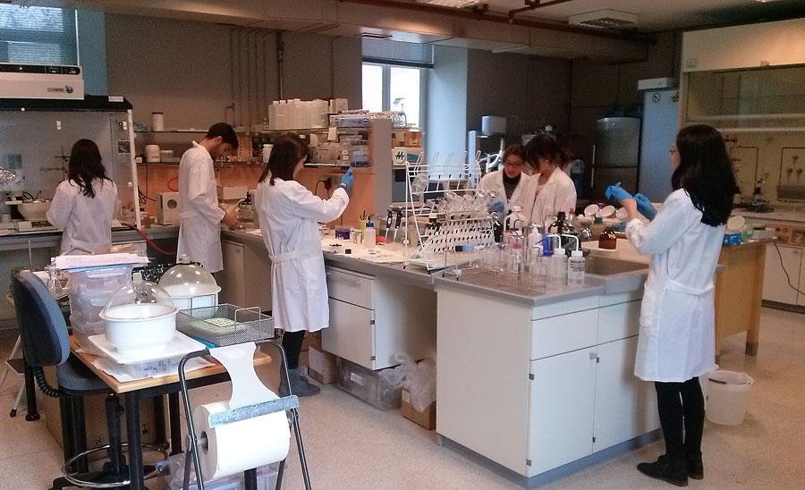 Centro de Investigacións Tecnolóxicas de Esteiro