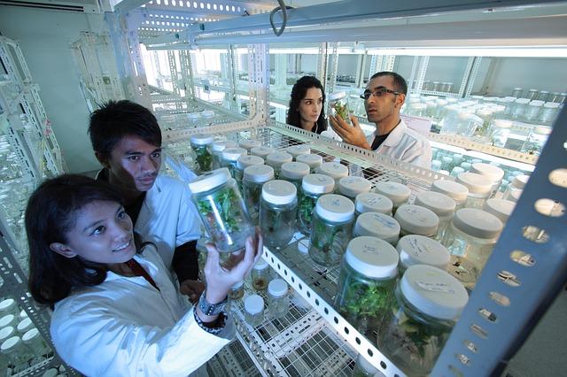 O traballo de laboratorio chega a múltiples aplicacións en Biotecnoloxía.