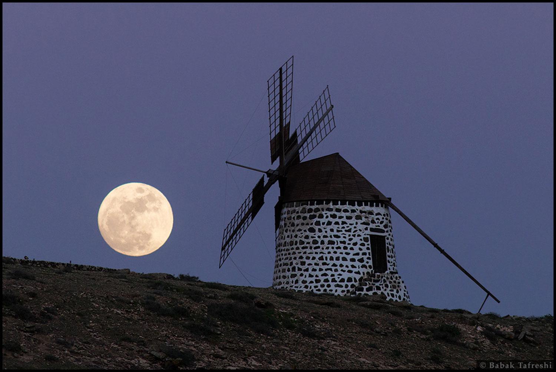 Lúa chea