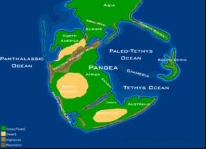 As fallas aparecen coa formación de Panxea, súpercontinente que tiña este aspecto hai 230 millóns de anos.