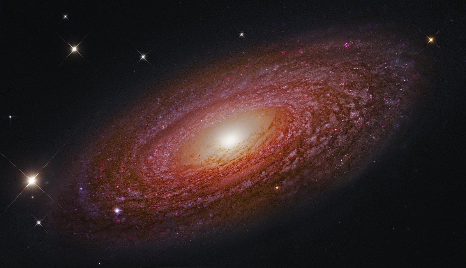 A masiva e achegada galaxia espiral NGC 2841