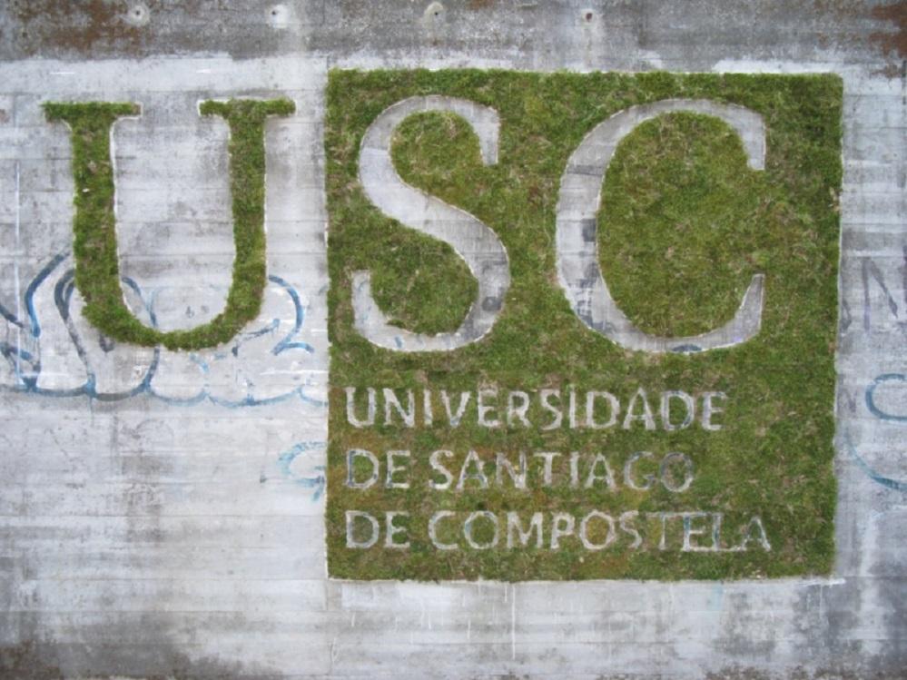 graffiti de musgo