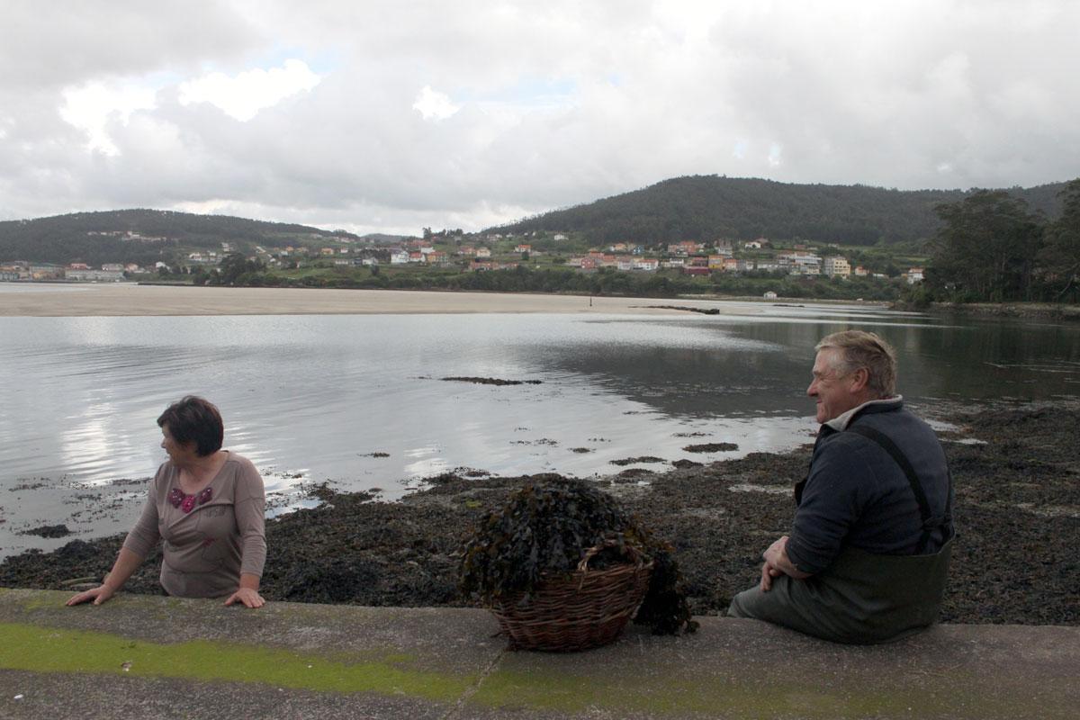 Foto da reportaxe 'Algas no agro galego', gañadora da segunda edición do Premio 'Contar a Ciencia'.