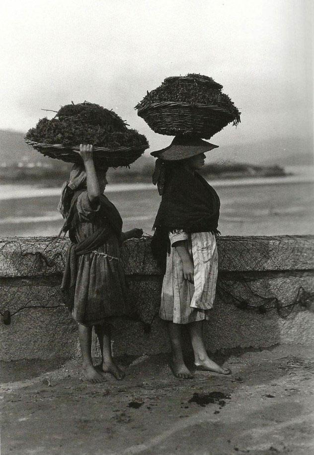 Mulleres carrexando algas. Noia, 1924.