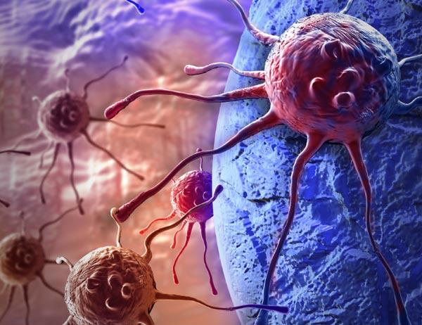 prueba cancer