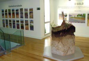 Sala dedicada ao solo, pioneira nos museos de historia natural en España