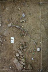 Acumulacion de restos oseos e liticos do nivel 3 de Cova de Eirós.