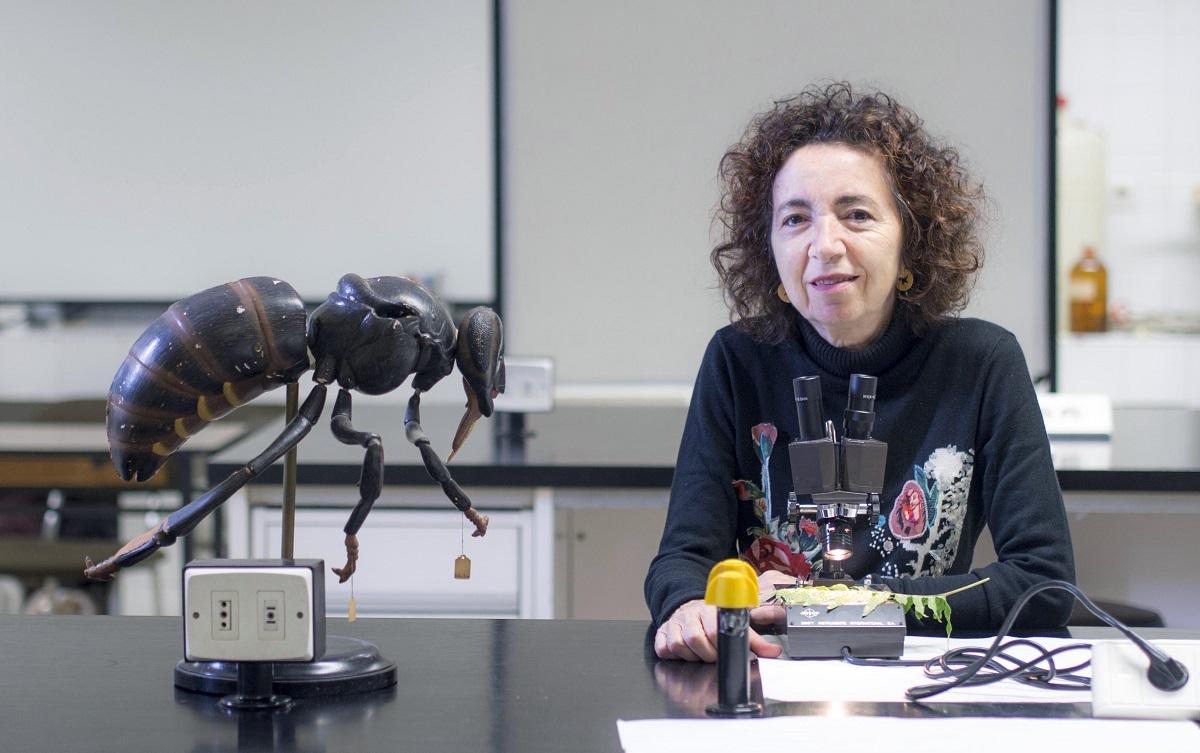 Marilar Aleixandre, profesora da USC e membro da comisión de Ciencia do Consello da Cultura Galega.