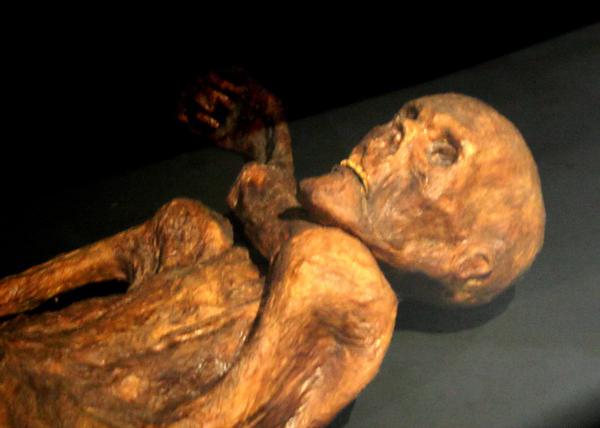 Otzi, o Home dos Xeos, unha momia de hai 3.300 anos.