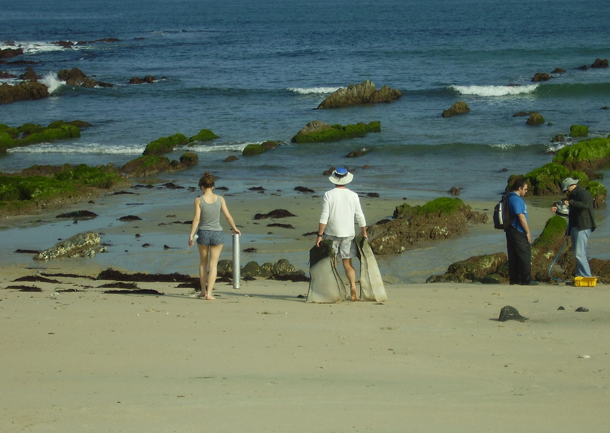 Traballo de campo nunha das praias nas que se baseou a tese
