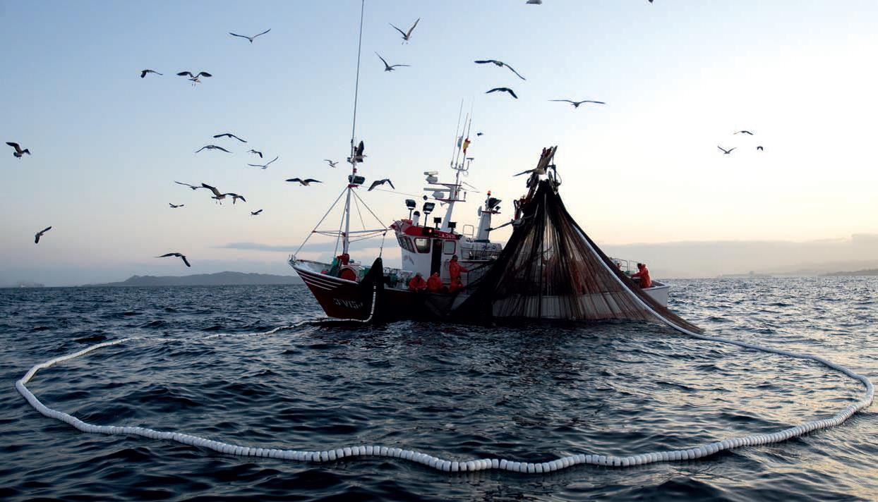 A FAO consegue o primeiro acordo internacional contra a pesca ilegal.