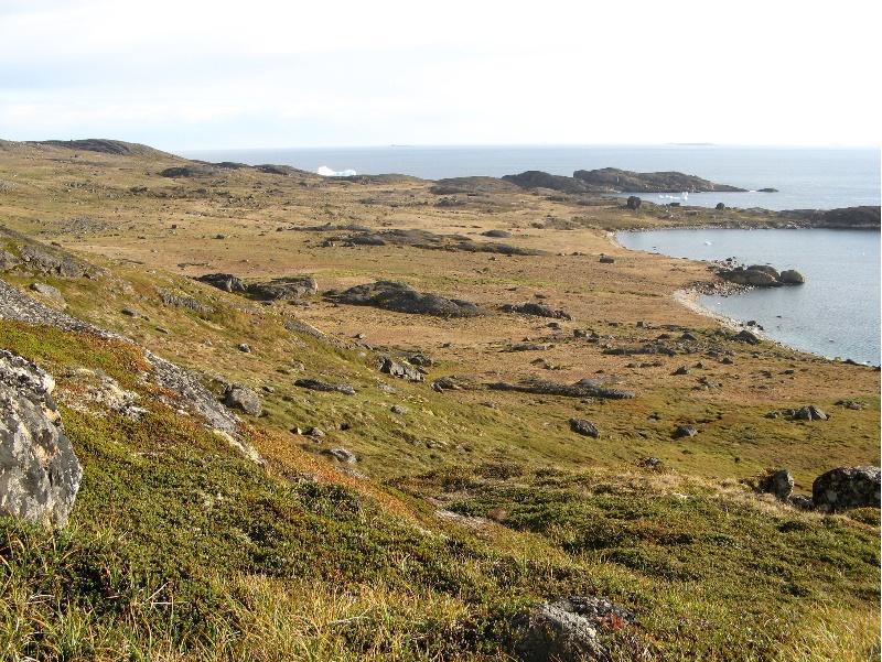 Turbera de Groenlandia onde se tomaron mostras comparativas coas galegas.