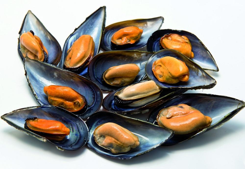 Os mexillóns foron un dos alimentos da investigación Galiat 6+7.