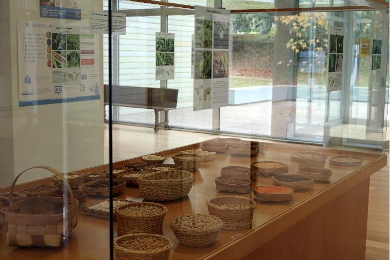 museo historia natural da usc