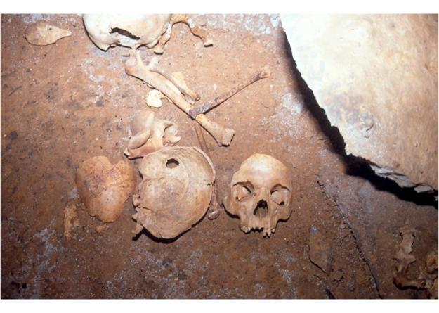 Esqueleto cueva O Courel
