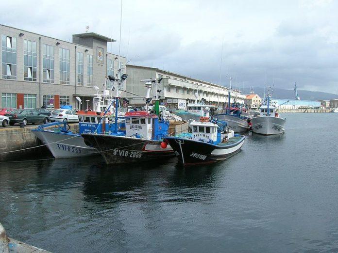 Puerto pesquero de Vigo. Foto JAGM