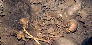 Restos humanos da cova da Braña, en Asturias, usados na investigación. Foto: CSIC.