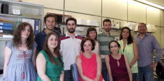 Marine Biotechnology and Aquaculture Research Group