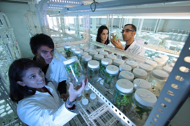 La Biotecnología pasa del laboratorio a la aplicación práctica.