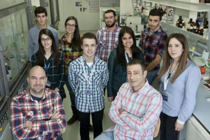 Os investigadores do grupo Nanobiomol, da Universidade de Santiago.