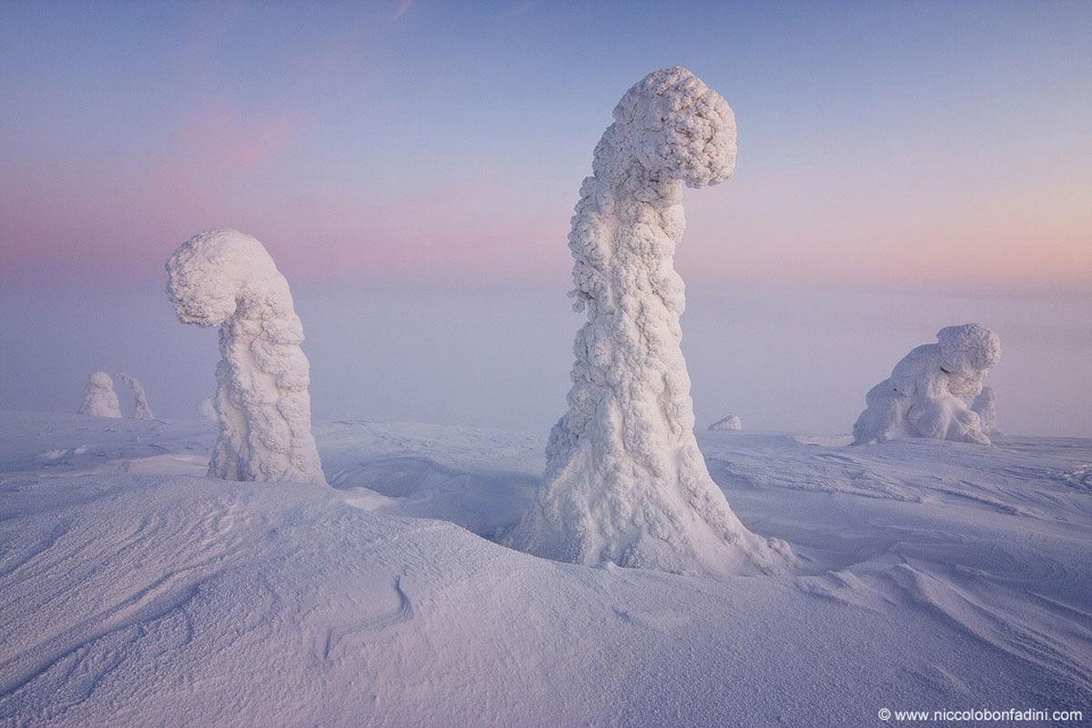 Sentinelas-do-Artico