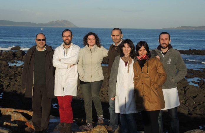 Ricardo Beiras e un grupo de científicos que participarán no proxecto Impacta.