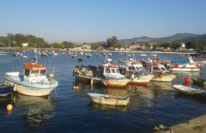 Barcos de pesca artesanal en Canido (Vigo). Foto: Dylanmonch.