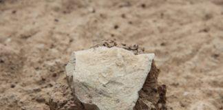 """A pedra da foto é a ferramenta de pedra máis antiga da historia. Un equipo internacional de científicos achou en Kenya estes trebellos, os máis antigos xamais atopados, que datan de 3,3 millóns de anos de antigüidade. Os artefactos indican que os homínidos puideron fabricar ferramentas moito antes do que se pensaba e poderían adiantar así as orixes do xénero Homo -que inclúe os humanos modernos-. Non obstante, os investigadores descoñecen aínda que especie puido realizalas. Os científicos atoparon 149 artefactos de pedra nunha montaña de Kenya e publican o descubrimento na revista 'Nature'. A datación atrasa en 700.000 anos a antigüidade das ferramentas ata agora máis antigas. Segundo os investigadores, os autores dos artefactos poderían ser ou non algún antecesor dos humanos. O achado é a primeira evidencia de que un grupo anterior de protohumanos (primeiros humanos) tivo as habilidades necesarias para fabricar ferramentas de bordos afiados. Estes artefactos marcan """"un novo comezo no rexistro arqueolóxico actual"""", sinalan os autores do estudo. Foto: Nature."""