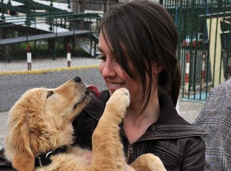 A cadela Osi, dun refuxio de animais de Sevilla, adestrada para terapia con humanos.
