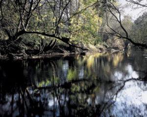 Os ríos constitúen o espectáculo das terras do Miño.