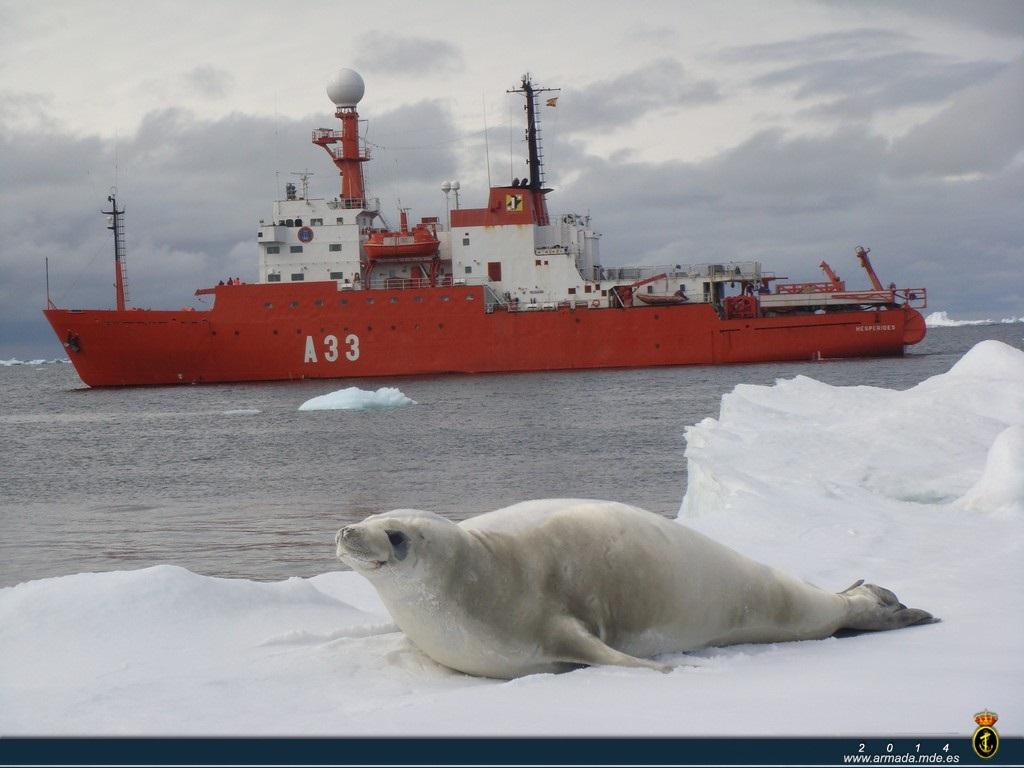 O Hespérides finaliza a campaña na Antártida 2014/15.
