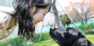 A mirada entre humanos e cans reforza os seus vículos afectivos.