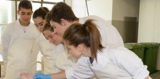 Escolares de Xuvenciencia practican a necropsia a un porco na facultade de Veterinaria de Lugo.