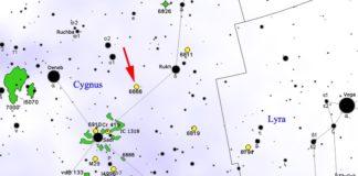 Situación da estrela KIC 8462852, dende o ceo da Terra.