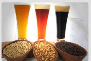 Os alumnos fabricarán distintas variedades de cervexa.