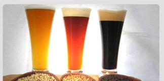 O cambio climático podería afectar á produción de orxo, ingrediente principal da cervexa.