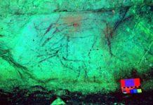 Pintura dun animal na Cova de Eirós.