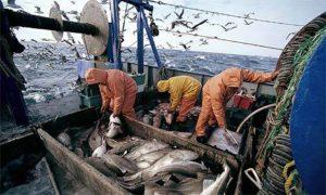 fishermenarticle