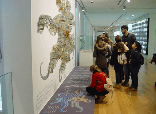 Visita á sala dedicada á biodiversidade do medio mariño