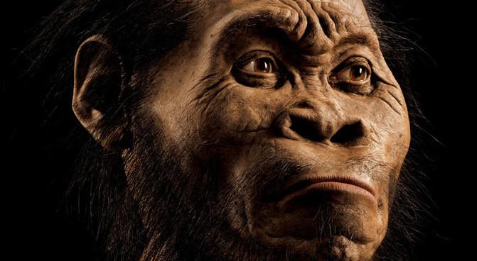 Reconstrución do Homo naledi por National Geographic.