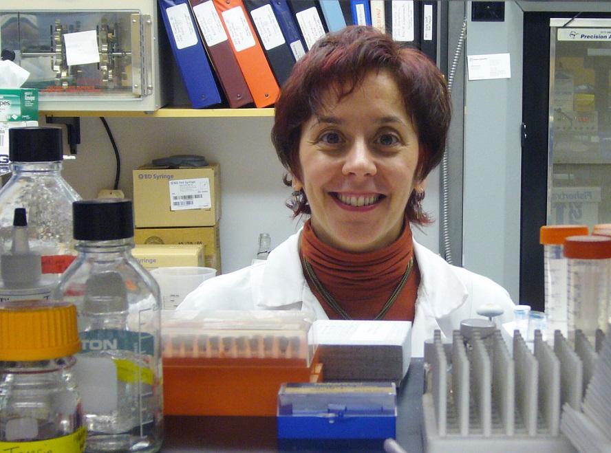 A investigadora coruñesa Marisol Soengas.
