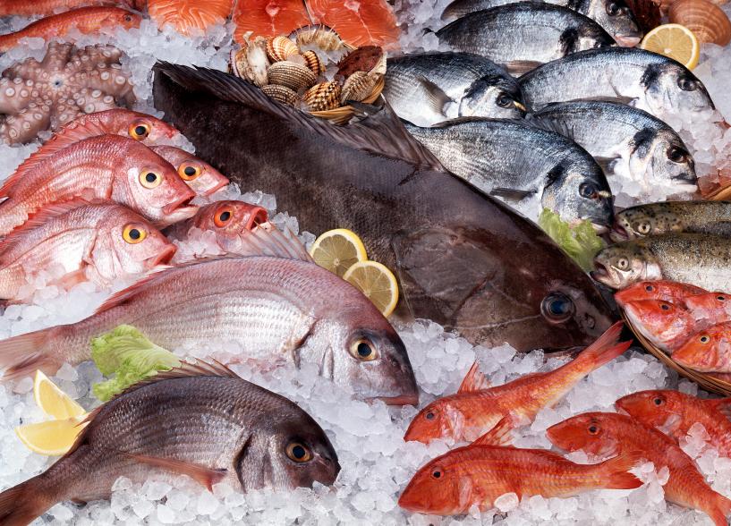 pescado-fresco.jpg-1