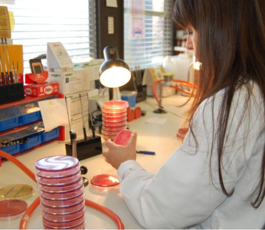 O Día da Muller na Ciencia foi impulsado pola ONU.