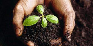 O 22 de Abril celébrase o Día Internacional da Terra.