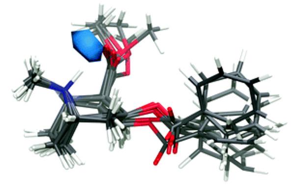 Estructura atómica da molécula de cocaína en solución acuosa. / Andrew J. Johnston et al./Univ. Oxford/UPC.