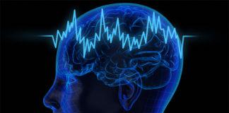 O cerebro fai cálculos estatísticos para tomar decisións.
